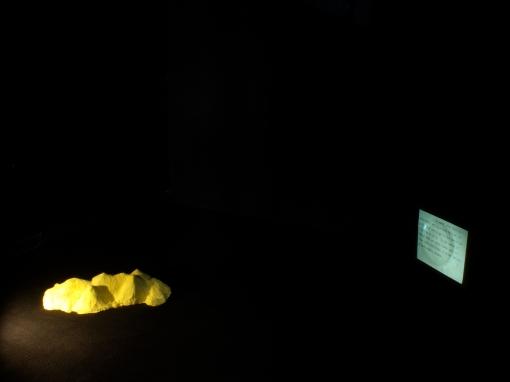 Manifestation IV, SOMA Contemporary, 2011, Jessica Foley and Wendy Judge.