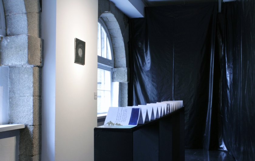 Manifestation IV, Wexford Arts Centre, 2011, Jessica Foley, Mark Cullen.